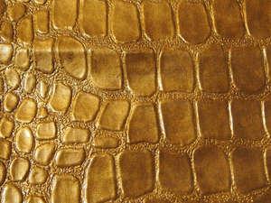 Caiman Gold 21641