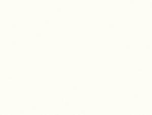 Белый Премиум W1000