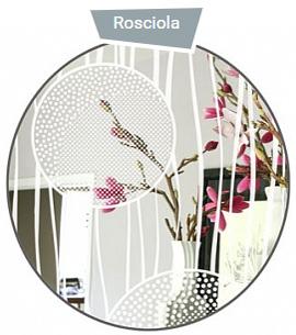 Brinolli Rosciola